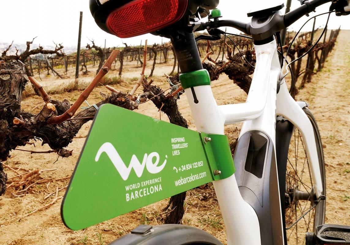 Winery Barcelona Ebike wine tasting tour