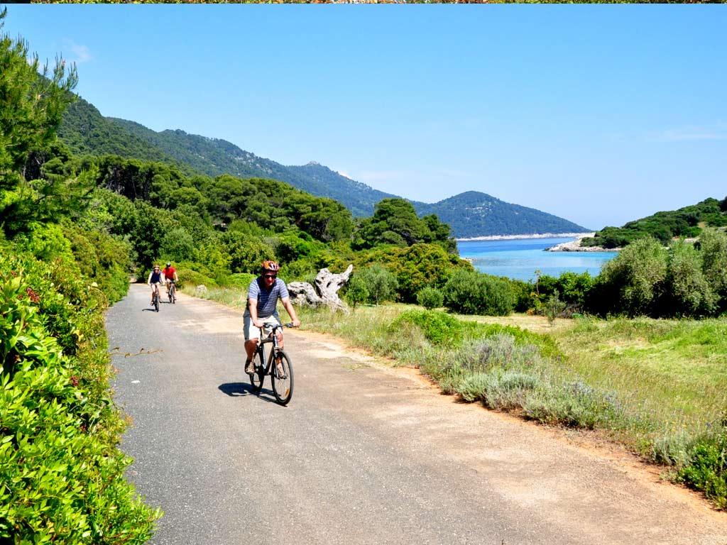 Šipan Island Cycling Day Trip