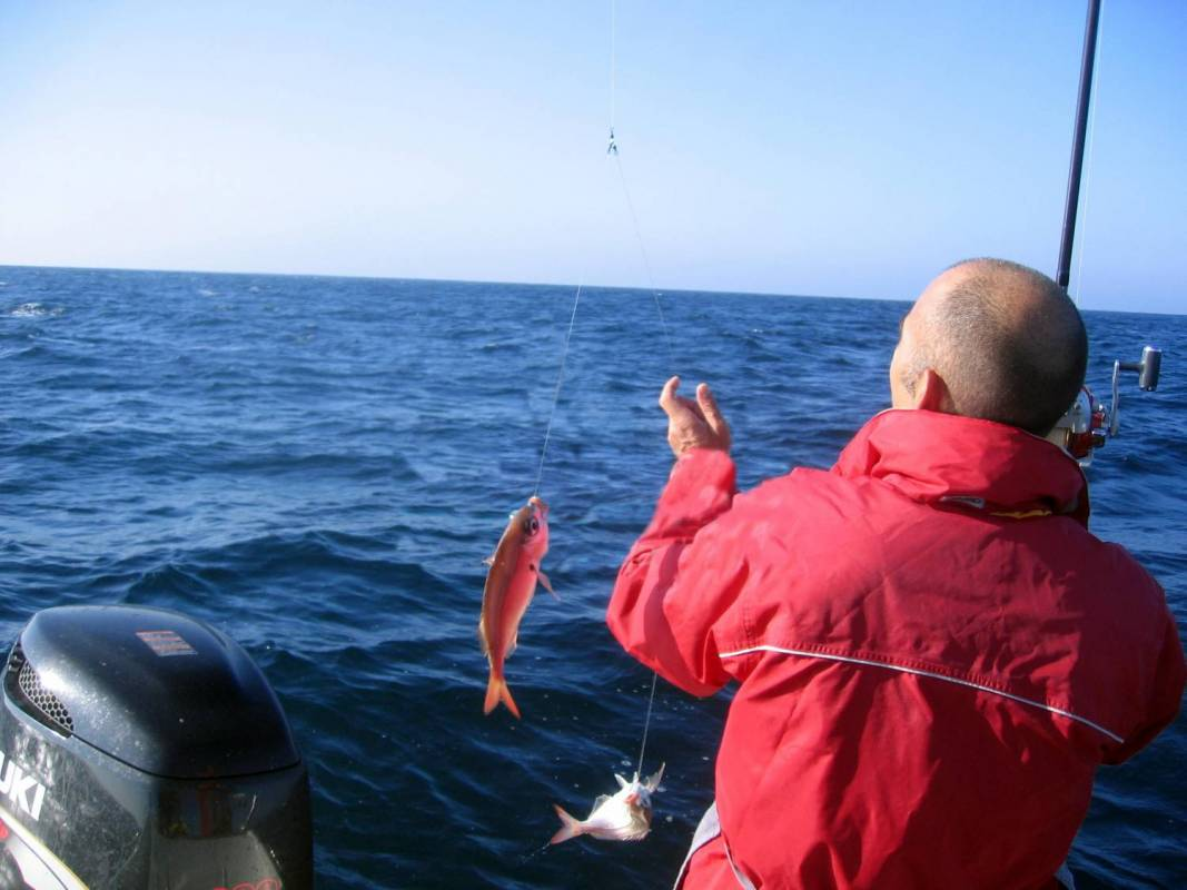 From Cascais: 4H Deep Sea Fishing