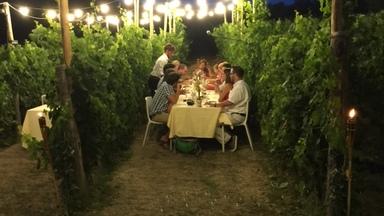 Dinner In The Chianti Vineyards