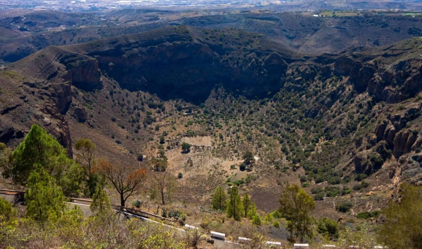 Las Palmas and Botanical Garden and Volcano