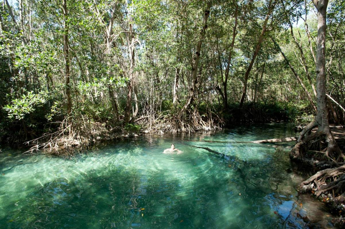 4 Days Of Ecotourism In Yucatan, Mexico