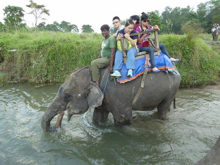 Poon Hill Trek With Chitwan Jungle Safari