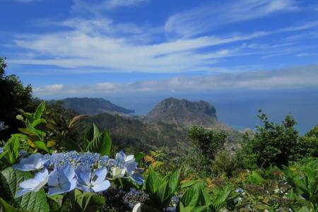Southeast - Country Delights and Farmers Market, Madeira Island