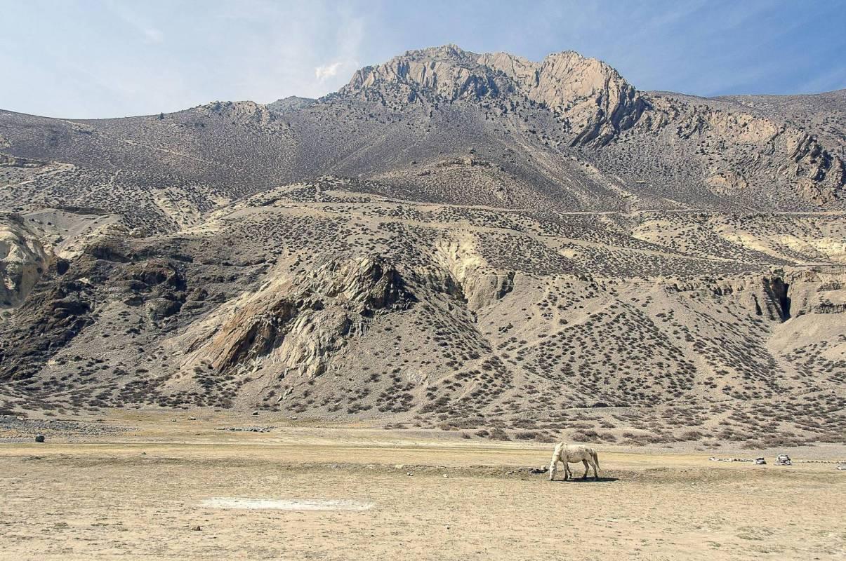 Upper Mustang Trek - 17 Days