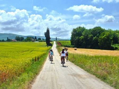 Discover Tuscany By E-Bike With Wine Tasting & Lunch, From Siena