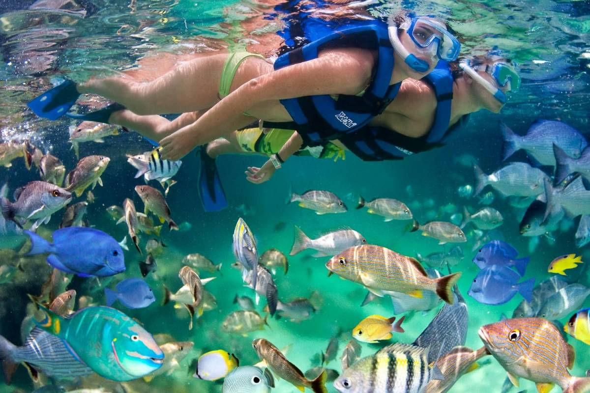 6 Days Of Unforgettable Yucatan Tour, Mexico