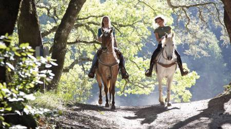Horseback Riding In Tuscany From Siena