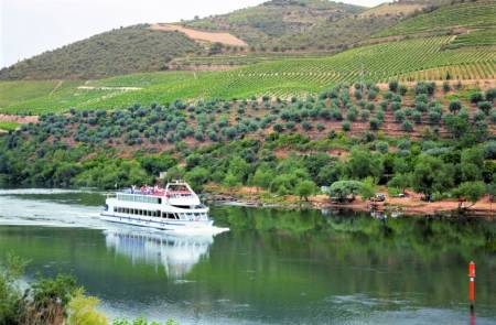 From Porto: Douro River Cruise With Breakfast, Lunch & Visit To A Wine Estate