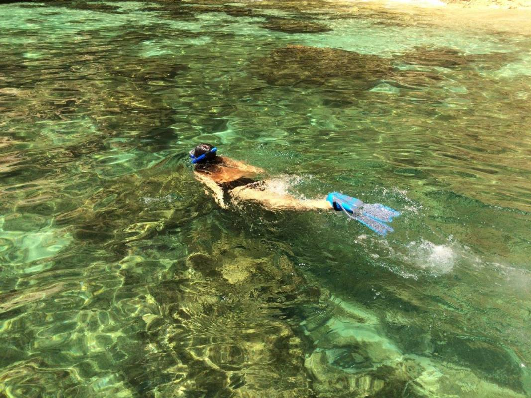 Snorkeling Experience And Boat Tour, From Portimão