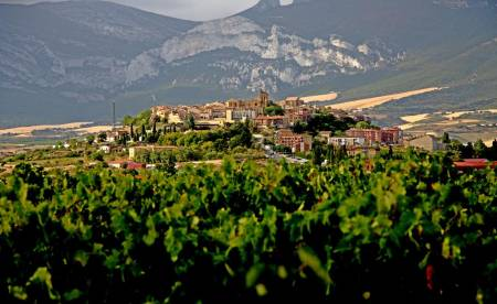 Vitoria & Rioja Ganztagestour