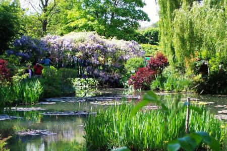 Monet'S Gardens In Giverny – Small Group Tour