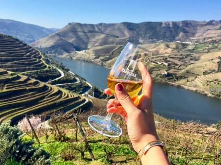 Douro Valley Tour From Porto With Lunch And Wine Tasting