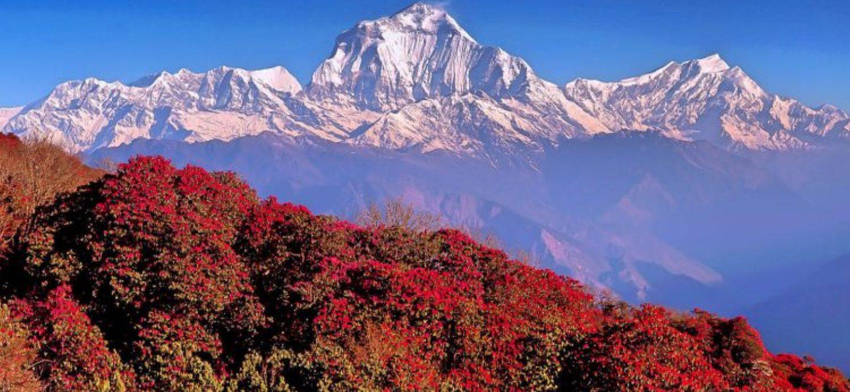 Experience Nepal Adventure Tour