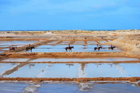 Ride At The Salt Flats - Sal Island - Cape Verde