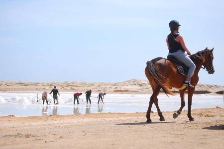Ride At The Salt Flats and Kite Beach - Sal Island - Cape Verde