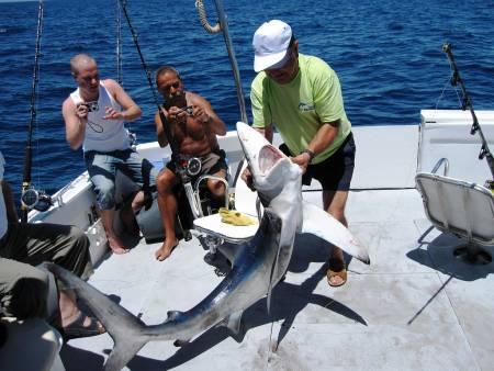 Algarve Deep Sea Fishing