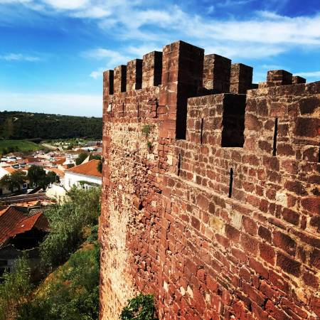 Albufeira: Full Day Of Wine Tasting In Vineyards And Visit To Silves Moorish Castle