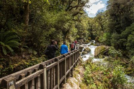 Alpine Winter Splendor At Milford Sound – Small Group With Cruise – Te Anau, New Zealand