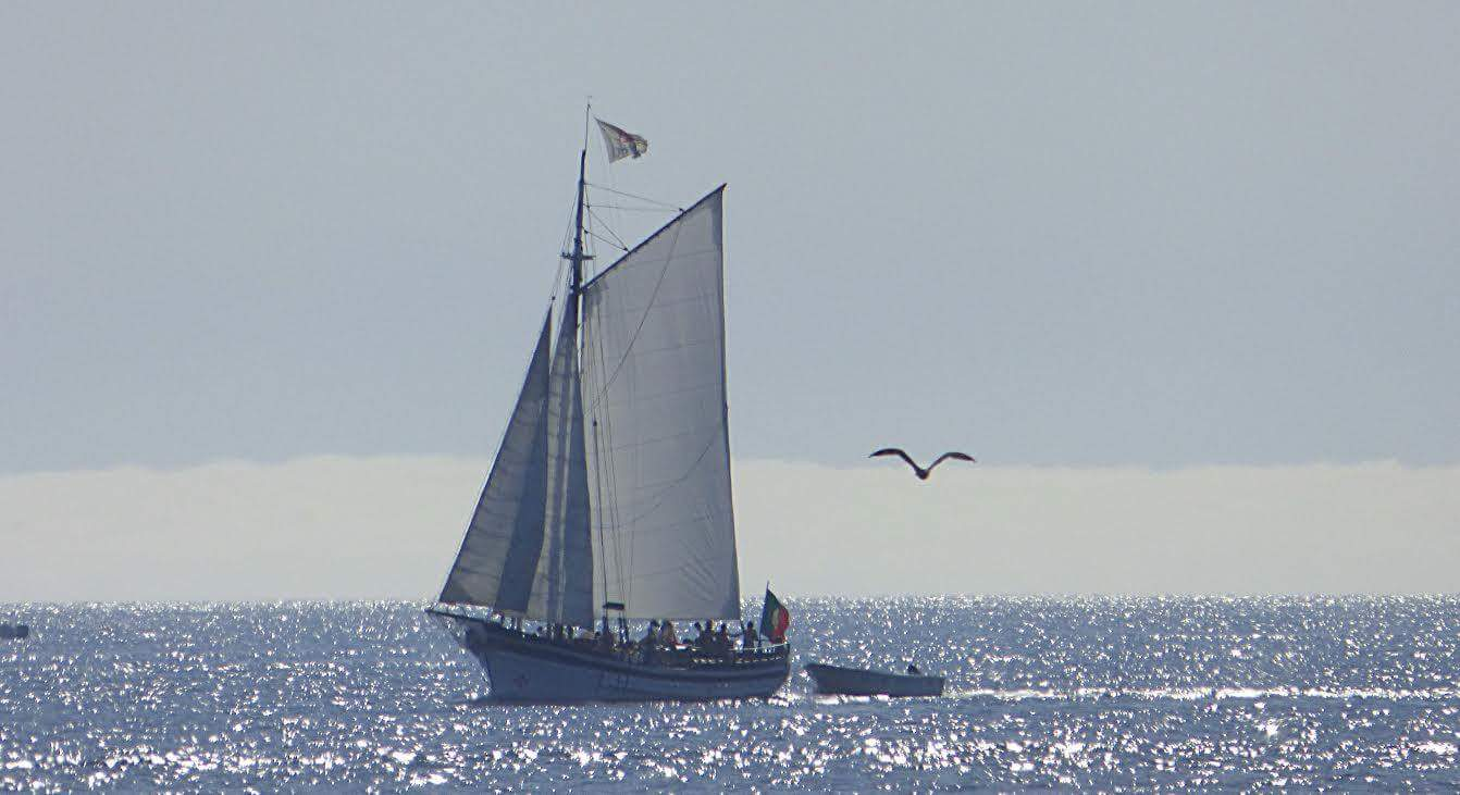 Unforgettable Tour To Ponta Da Piedade In Sailboat, Departing From Portimão