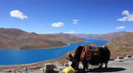 8-Day Tour In The Lhasa Tibet & Everest Base Camp From Kathmandu