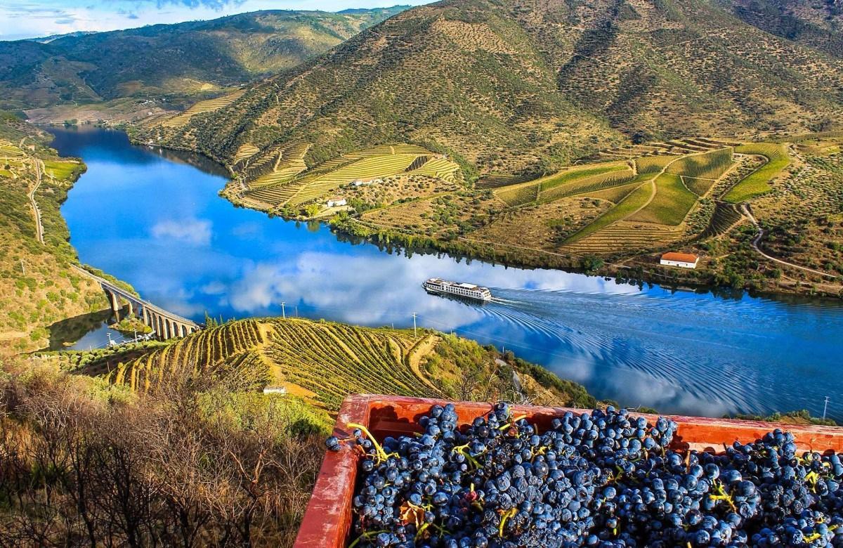 Tour Douro Valley