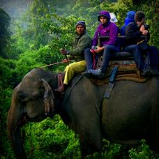 8 Jours Kathmandu Chitwan Pokhara Tour