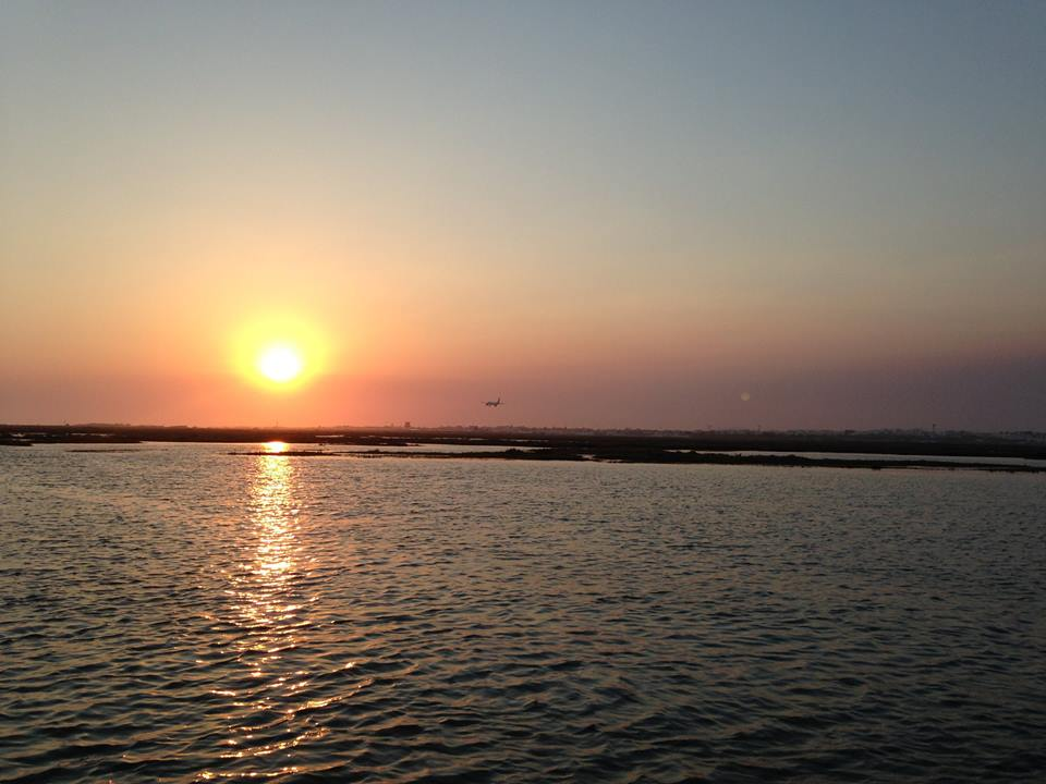 From Faro: Private Sunset Tour On Sailing Catamaran In Ria Formosa