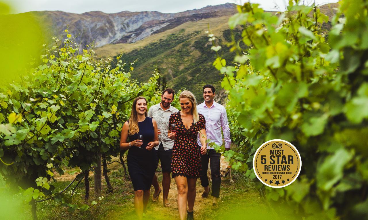 Queenstown: 5-Hour Wine Tasting Tour In Wineries Of Gibbston Region
