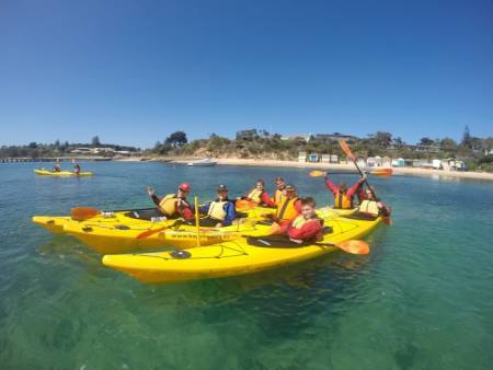 Kayak Die Mornington Peninsula Coast Line & Dolphin Sanctuary