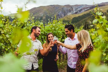 From Queenstown: 5-Hour Wine Tasting Tour In Wineries Of Gibbston Region