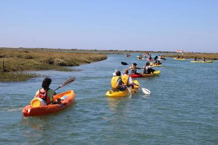 Kayak tour ria formosa faro algarve