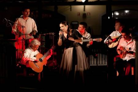 Lisbon Tour At Night & Dinner With Fado Show