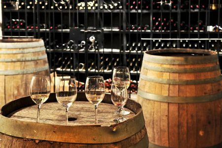 Half Day Wine Tasting Tour In Vineyards From Mendoza