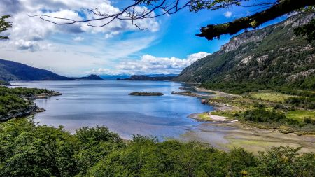 From Ushuaia: Half-Day Tour To Tierra Del Fuego National Park