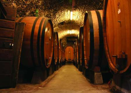 From Florence: Full-Day Tour In The Chianti Hills With Wine Tasting & Lunch