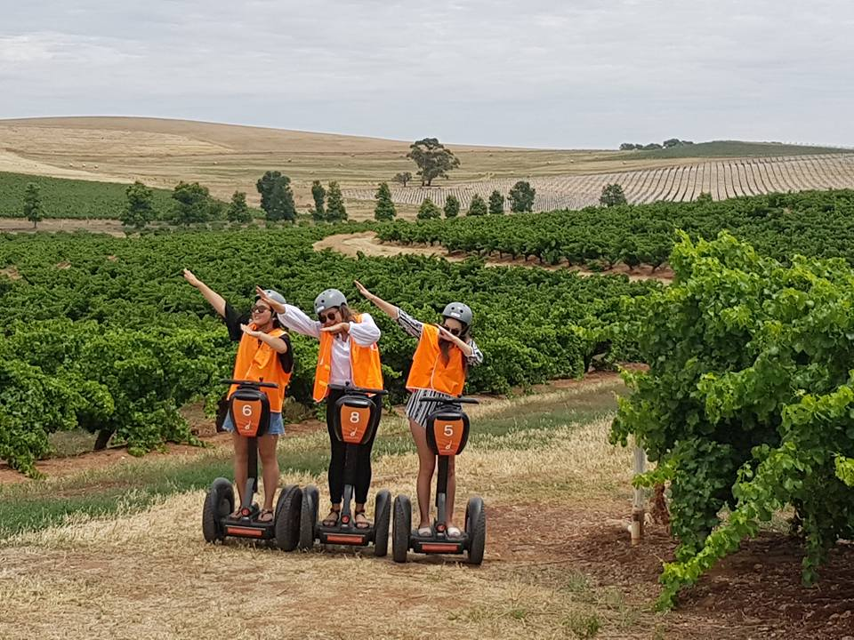 1-Hour Segway Tour At Seppeltsfield Winery, Barossa Valley