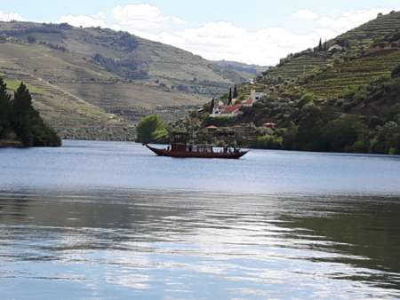 Porto: Private Day Tour To The Douro Valley With Wine Tasting & Boat Trip