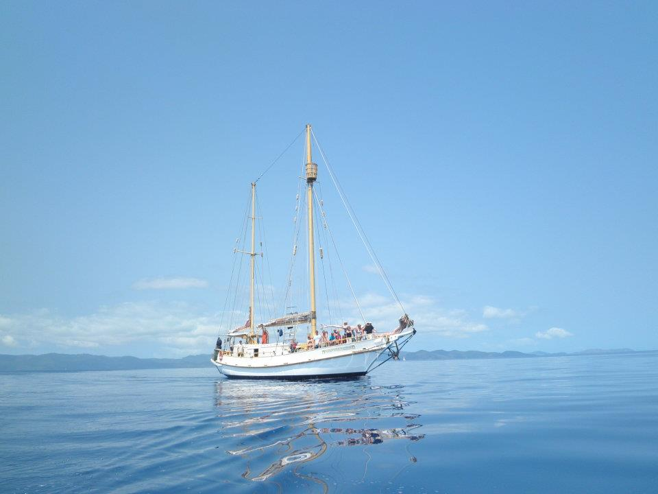 All Inclusive Full-Day Tour On Sailing Vessel To The Whitsunday Islands With Snorkelling