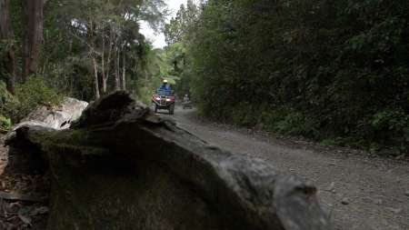 From Nelson: 1.5-Hour Quad Bike Tour In The Cable Bay Adventure Park