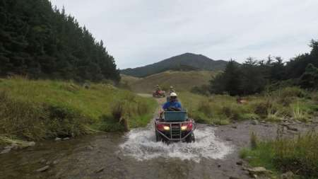 From Nelson: 2.5-Hour Quad Bike Tour In The Cable Bay Adventure Park