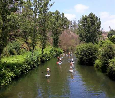 From Porto: Stand Up Paddle Tour In The Arda River