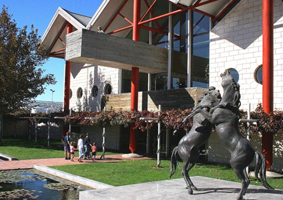 From Mount Gambier: Small-Group Tour To Coonawarra Wine Region With Tastings