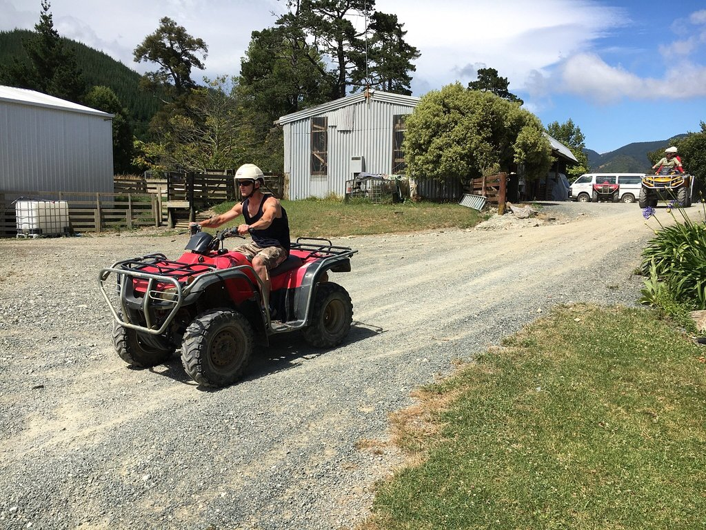 Nelson: 2.5-Hour Quad Bike Tour In The Cable Bay Adventure Park