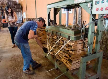 Visit A Cork Factory In The Algarve With An Expert Guide