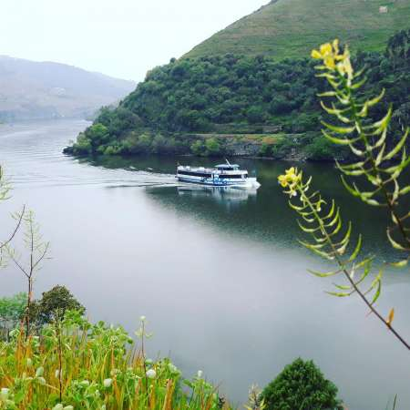 From Porto: Full Day Douro Cruise With Lunch On Board And Farm Visit With Wine Tasting