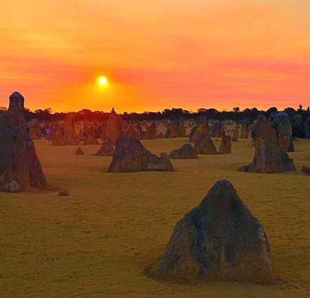 Perth: Small-Group Tour To Pinnacles Desert With Stargazing Tastings and Dinner