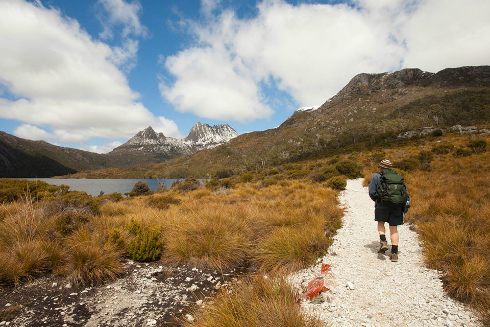 From Launceston: Full-Day Tour To Cradle Mountain National Park