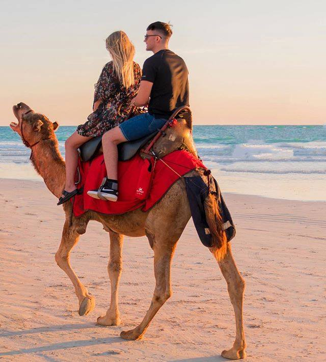 Broome: Camel Ride During The Sunset At Cable Beach