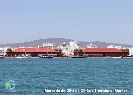 De L'île De Fuzeta: Excursion D'une Journée En Bateau Vers Les Îles De Ria Formosa En Algarve